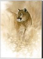 Wild One Fine-Art Print