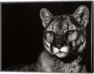 Scratchboard Nightfall Fine-Art Print