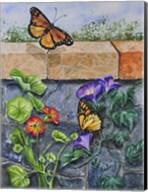 Monarchs, Nasturtiums and Morning Glories Fine-Art Print