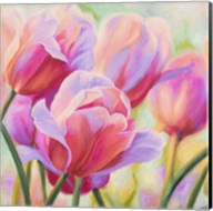 Tulips in Wonderland I Fine-Art Print
