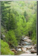 Spring on the Pemigewasset River, Flume Gorge, Franconia Notch State Park, New Hampshire Fine-Art Print