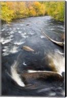 Ashuelot River, New Hampshire Fine-Art Print