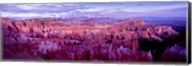Bryce Canyon, Utah Fine-Art Print