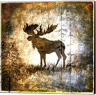 High Country Moose Fine-Art Print