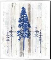 The Blue Moose - Lodge Pole Pine Fine-Art Print