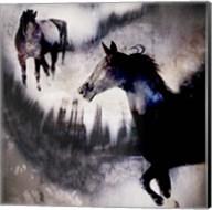 Black Mare - Dream 1 Fine-Art Print