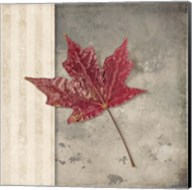 Lodge Leaf 1 Fine-Art Print