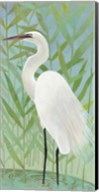 Egret by the Shore II Fine-Art Print