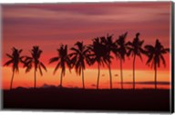 Palm Trees and Sunset, Queens Road, Fiji Fine-Art Print