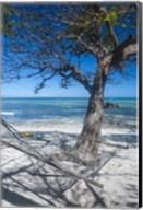 Hammock on the beach of a resort, Nacula Island, Yasawa, Fiji, South Pacific Fine-Art Print