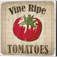 Vine Ripe Tomatoes Fine-Art Print