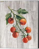 Market Vegetables IV Fine-Art Print