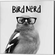 Bird Nerd - Chaffinch Fine-Art Print