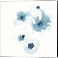 Protea Blue III Fine-Art Print