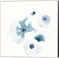Protea Blue IV Fine-Art Print