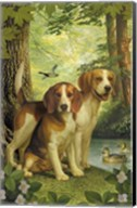 Beagles And Duck Fine-Art Print