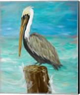 Single Pelican on Post Fine-Art Print
