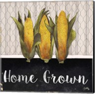 Local Grown II Fine-Art Print