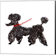 Central Park Poodle Fine-Art Print