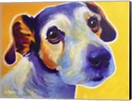 Jack Russell - Mudgee Fine-Art Print