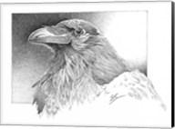 Ravens Head Fine-Art Print