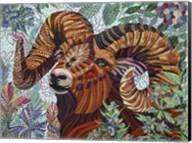 Aries Fine-Art Print