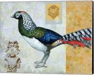 Diamond Pheasant Fine-Art Print