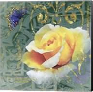 Mogador Garden 5A Fine-Art Print