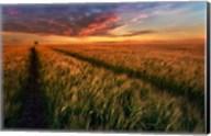 Somewhere At Sunset Fine-Art Print