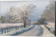 A Frosty Morning Fine-Art Print