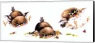 Bird And Ladybug Fine-Art Print