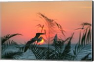 Sunset Gull and Fronds Fine-Art Print