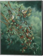 Holly And Chickadees Fine-Art Print