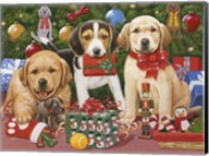 Which One's Mine - Xmas Puppies Fine-Art Print