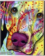 Close Up Lab Fine-Art Print