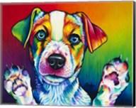 Jack Flash Fine-Art Print