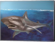 The Shark Fine-Art Print