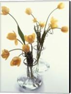 Spring Fine-Art Print
