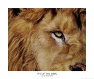 Eye of the Lion Fine-Art Print