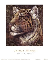 Spotted Beauty Framed Print