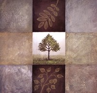 Moment of Nature II Framed Print