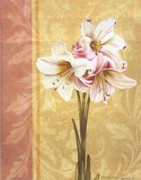 Flower Bouquet II Framed Print