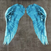 Angel Wings V Framed Print