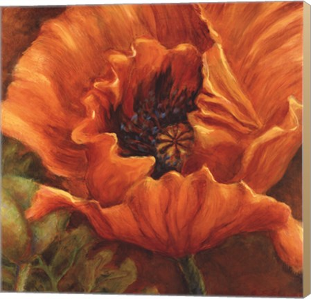Canvas Orange Poppy