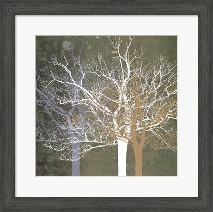 Quiet Forest Framed Art
