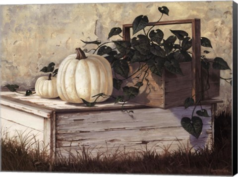 Framed White Pumpkins Print