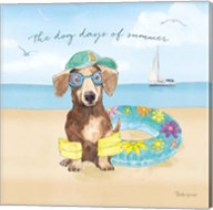 Summer Paws III Fine-Art Print
