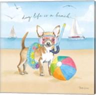 Summer Paws II Fine-Art Print