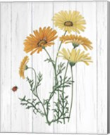 Botanical Bouquet on Wood I Fine-Art Print