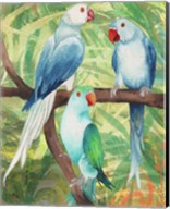 Tropical Birds I Fine-Art Print
